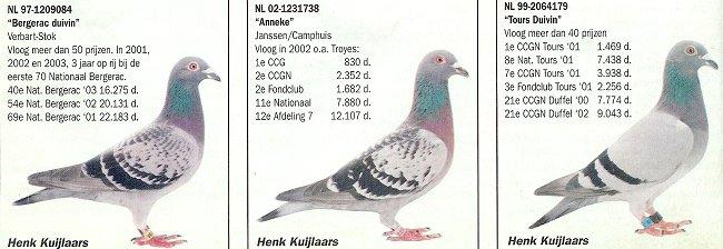 3duivennpo2004