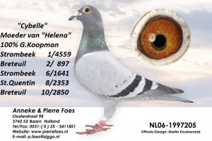 NL06-1997205