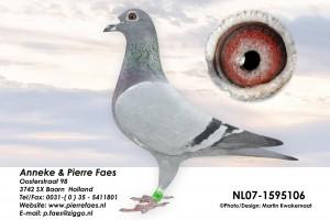NL07-1595106