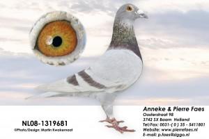 NL08-1319681