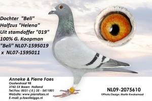NL09-2075610 (2)