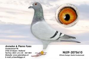NL09-2075610