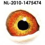 NL10-1475474