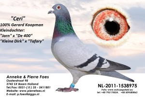 NL11-1538975