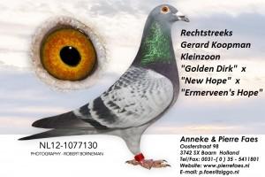 NL12-1077130