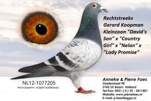 NL12-1077205