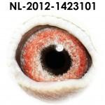 NL12-1423101