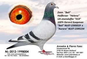 NL12-1998004