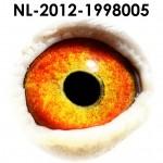 NL12-1998005