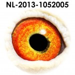 NL13-1052005