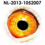 NL13-1052007