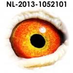 NL13-1052101