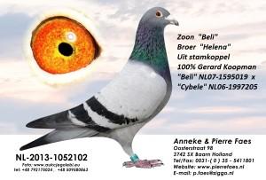 NL13-1052102