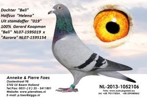 NL13-1052106