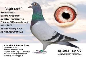 NL13-1654772
