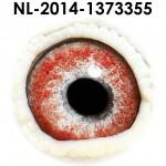 NL14-1373355