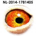 NL14-1781405