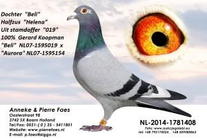 NL14-1781408