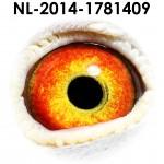 NL14-1781409