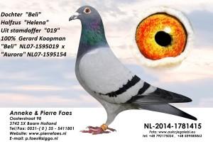 NL14-1781415
