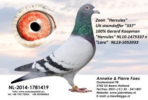 NL14-1781419