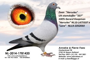 NL14-1781420
