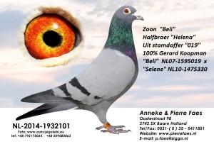 NL14-1932101