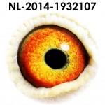 NL14-1932107