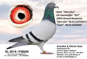 NL14-1938605