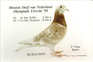 NL90-2168791
