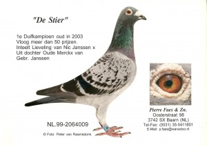 NL99-2064009