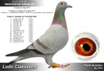 NL07-3728151 Nestsiter Super 50.jpg